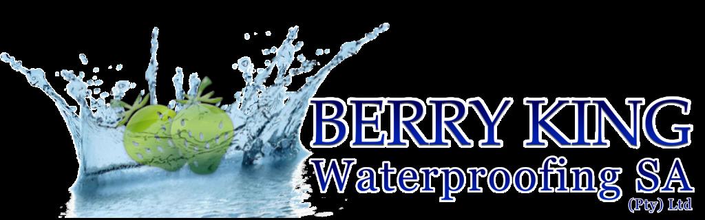 Berryking Waterproofing Johannesburg 1024x320
